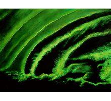 Uranium Green Photographic Print