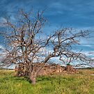 Bluestone Ruins by Jason Ruth