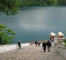 Steps Down To Lake Bled by Jenny Brice