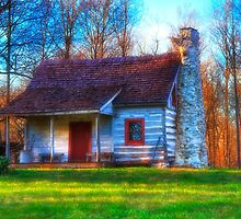 House on the Hill by Anthony M. Davis