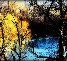Winter Chill © by Dawn M. Becker