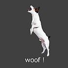 Woof ! by John Kelly
