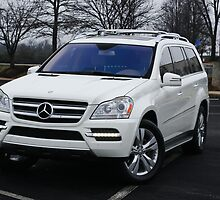 2011 Mercedes-Benz GL-450 - Cloudy Day Perfect for AWD by Daniel  Oyvetsky