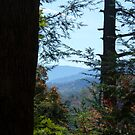 View of the Smoky Mountains - This is Home by JeffeeArt4u