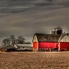 Rural Scene in the afternoon  by carlosramos