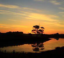 Table Cape Sunset , Wynyard , Tasmania , Australia by phillip wise