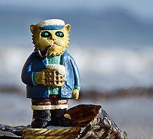 The Seafaring Cat by Susie Peek