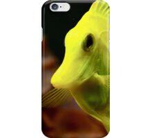 Yellow Tang iPhone Case/Skin
