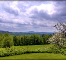 Springtime in the Hills of Washington, New Hampshire by Monica M. Scanlan
