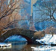 Central Park, NYC- Gapstow Bridge by Nathan Seiler
