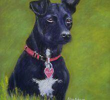 Tarn, the Patterdale Terrier by Hilary Robinson
