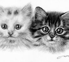 Kittens by Danguole Serstinskaja