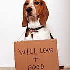 Will love 4 food by Darren Boucher