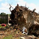 2011 08 21 Goderich, Ont. Tornado One Week Later Aftermath 6697 by Daniela Weil