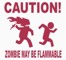 Zombie may be flammable by queenseptienna
