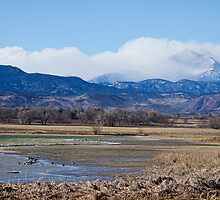 Clouds Hanging On CO Rocky Mountains Mt Meeker and Longs Peak by Bo Insogna