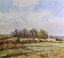 Castle Hill, Wittenham Clumps by Patsy Smiles