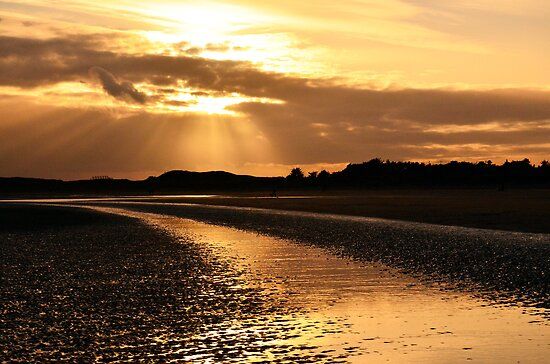 Donabate Beach by Martina Fagan