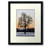 Endure Framed Print