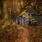 Secluded by Robin-Lee