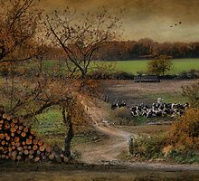 Pastoral Bliss by Robin-Lee