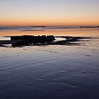 Wreck of the Hanseat by David Pringle
