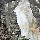 Through the Woods by Igor Zenin