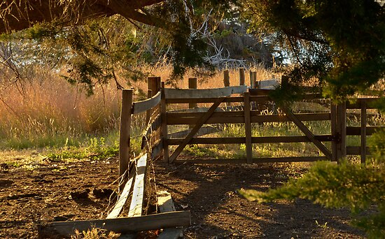 A Farm Fence by Karine Radcliffe