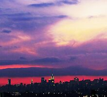 Winter sunset, New York City by Alberto  DeJesus
