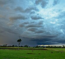 South East Qld Storm by Kate Wall
