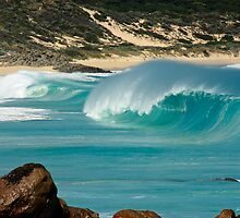 """Surf's Up"" at Injinup, Western Australia by Julia Harwood"