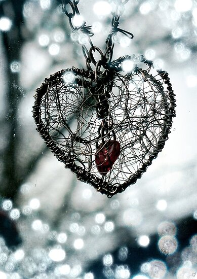 Secret Heart (Photograph) by Sybille Sterk