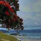 Tawharanui, New Zealand. by Roy  Massicks