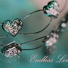 Endless Love by Lori Deiter