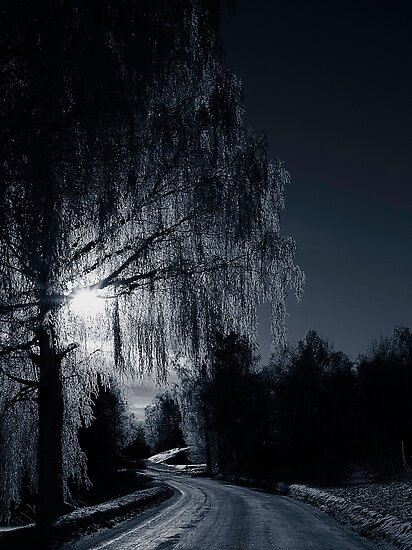 Frost Night by Erik Brede