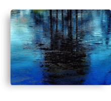 Blue Ice  Canvas Print