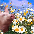 Throwing daisies to the pig by Palomar78