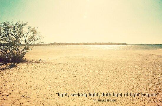 Light, Seeking Light, Doth Light of Light Beguile.... by Carol Knudsen