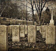 Fallen Comrades by PhotosByHealy