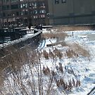 High Line in Snow, New York's Elevated Garden and Park by lenspiro