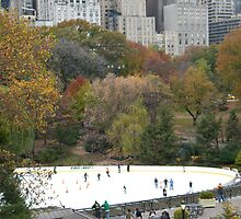 Central Park, Wollman Rink, Fall Colors by lenspiro
