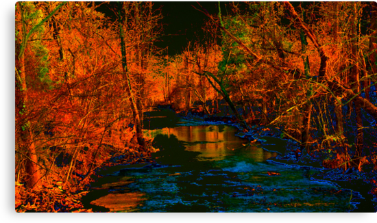 Blue Creek in Orange by Lee Walters Photography
