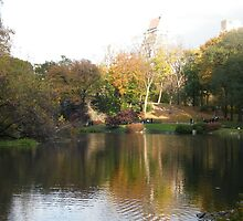 Central Park, Fall Colors  by lenspiro