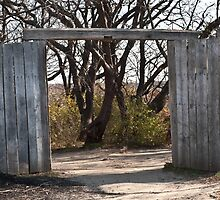 Gateway to the Forest by BialySnieg96