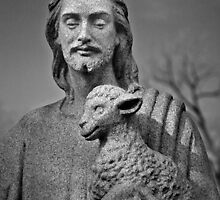The Shepherd by PhotosByHealy