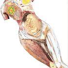 "Anatomical Nude Modelled on ""In Utero"" Album by vorapple"