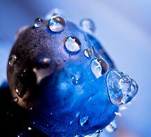 I Love BlueBerries! by GerryMac