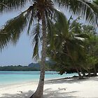 Beach in Vanuatu by Sandy1949