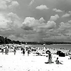 Noosa Beach by Nicole Barnes