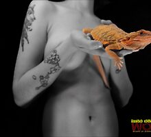 Bearded dragon and his master by woahreptiles